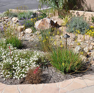 Trindle Dry Creek Bed Garden
